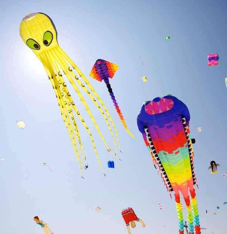 The most elaborate kites I have ever seen.